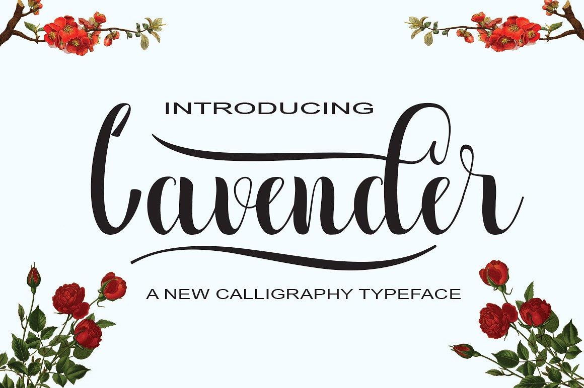 Lavender Script