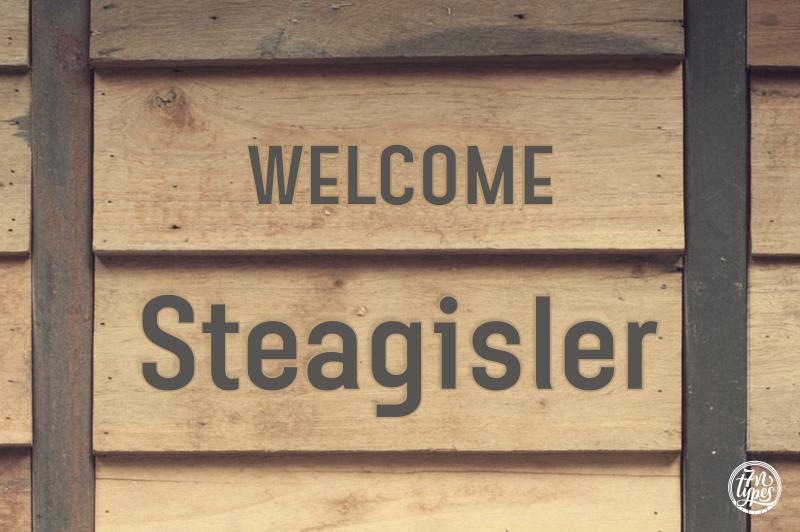 Steagisler
