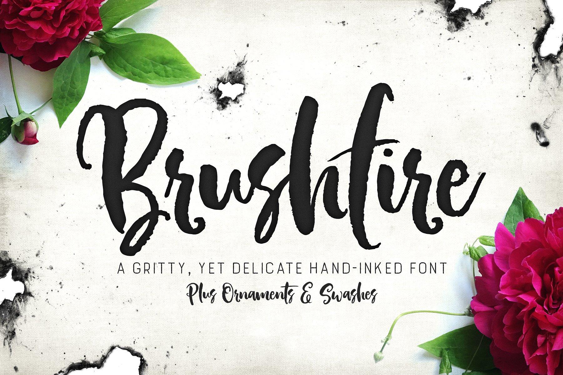 Brushfire Typeface + Extras