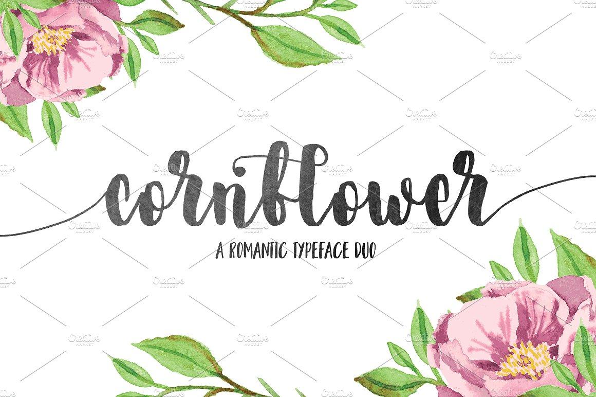 Cornflower Script