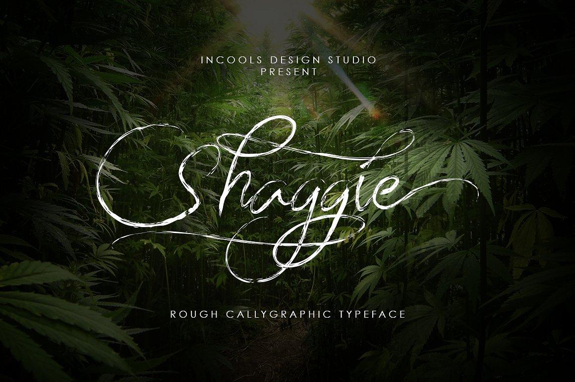 Shaggie Script