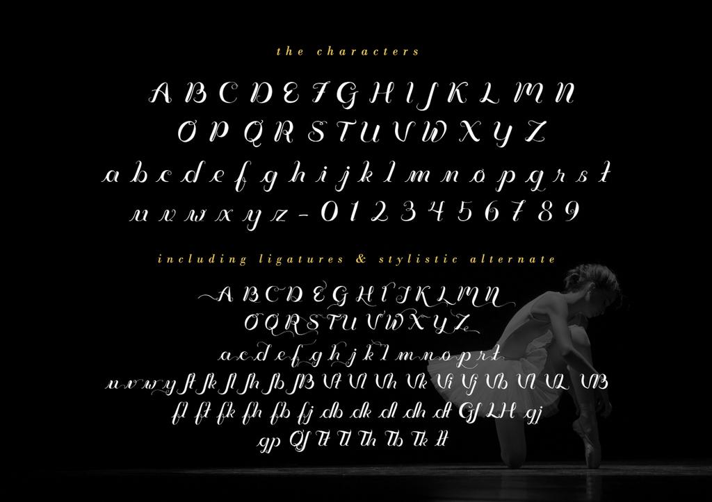 Vignette Typeface