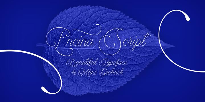 Encina Script