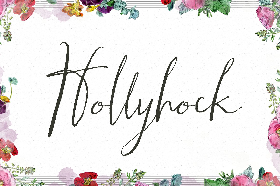 Hollyhock Calligraphy