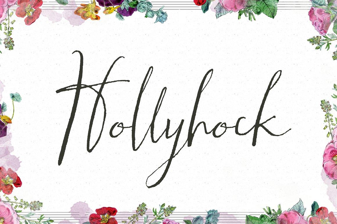 Hollyhock Calligraphy