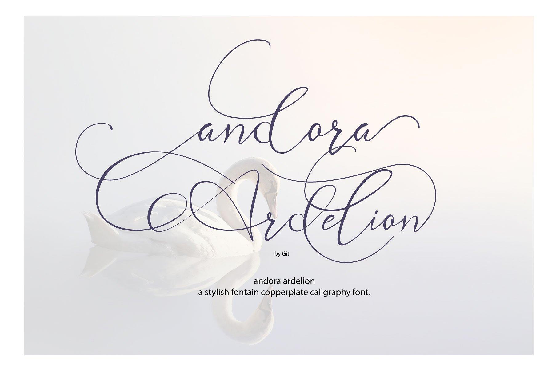 Andora Ardelion Script