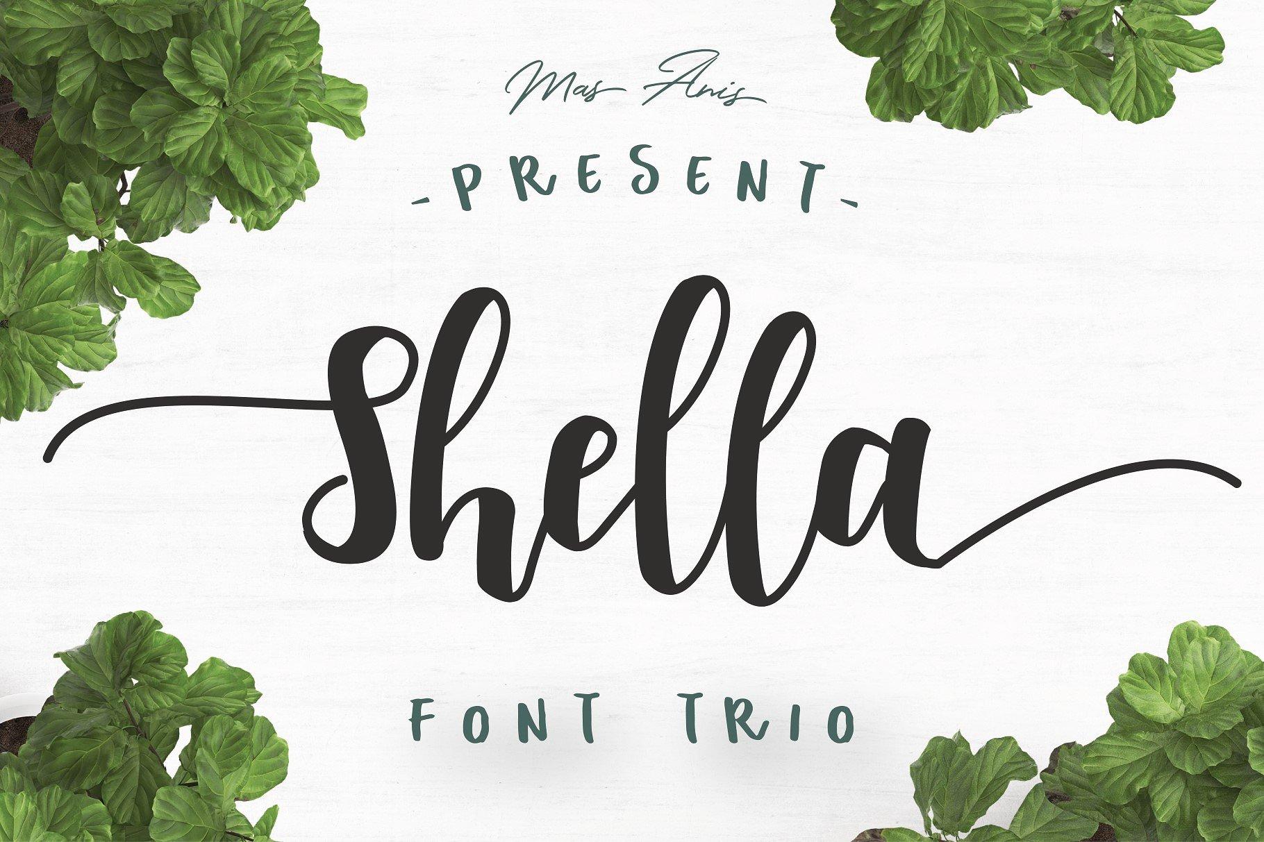 Shella Brush