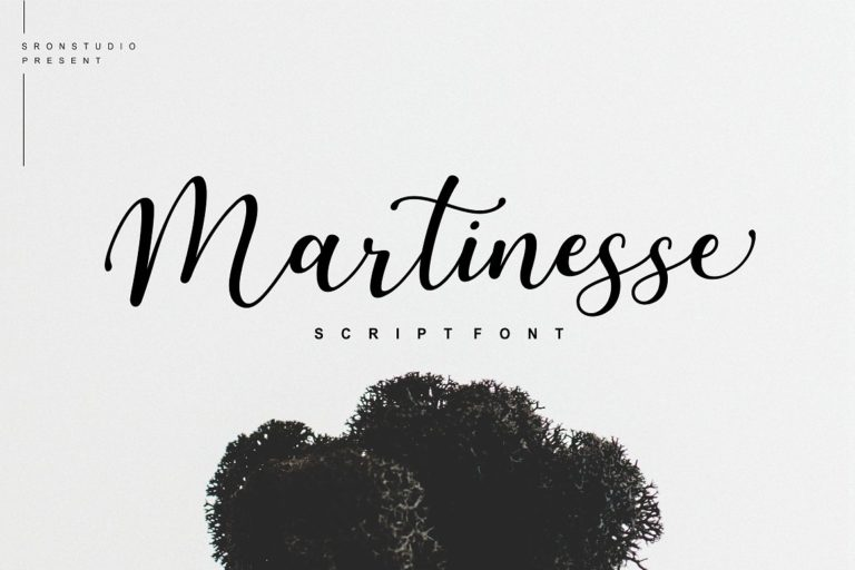 Martinesse Script