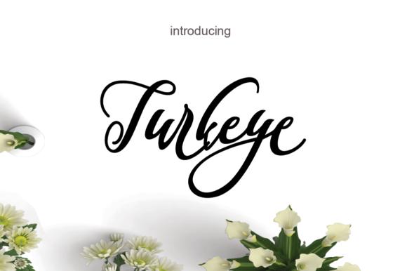 Turkeye Script